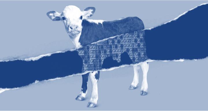 Technology in milk production dairynews7x7