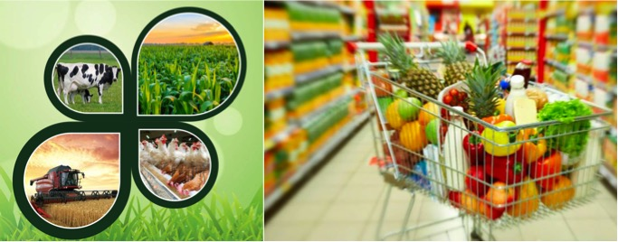 farmer future in dairy poultry food retail dairynews7x7