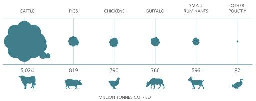 global greenhose gas livestock fao dairynews7x7