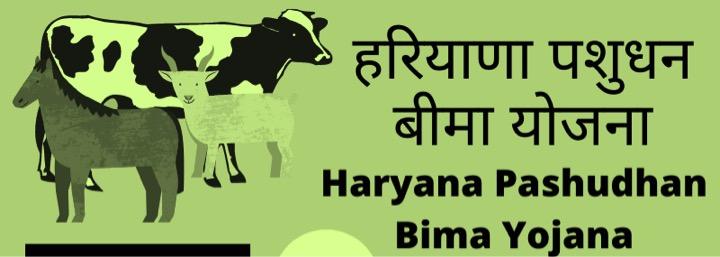 haryna pashudhan bima yojana discontinued dairynews7x7